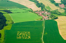 qr code cut into agricultural field